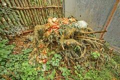 Pal kompost Obrazy Royalty Free