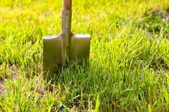 Pala attaccata nella terra Strumenti di giardino su un prato inglese verde Immagini Stock