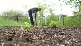 Pala di scavatura dell'uomo nel giardino video d archivio