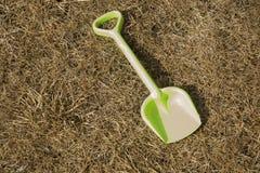 Pala verde chiaro del bambino su una vecchia erba Fotografia Stock