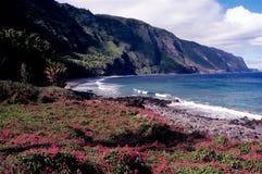 Palaa'u Nationalpark Lizenzfreies Stockfoto