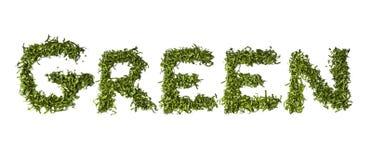"""Palabra """"verde"""" escrito con la ensalada Fotografía de archivo libre de regalías"""
