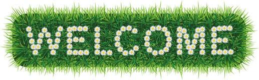 Palabra AGRADABLE hecha de margaritas en fondo de la hierba ilustración del vector