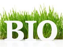 Palabra bio con la hierba fresca Fotos de archivo libres de regalías