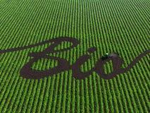 Palabra bio en la tierra cultivada stock de ilustración
