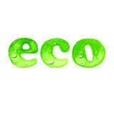 Palabra de Eco en estilo de la acuarela ilustración del vector