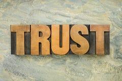Palabra de la confianza en el tipo de madera Imagen de archivo libre de regalías