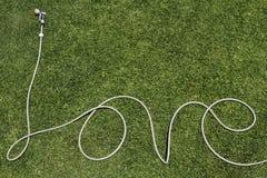 Palabra de la manguera del verano del amor en césped Fotos de archivo