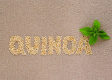 Palabra de la quinoa con albahaca imágenes de archivo libres de regalías