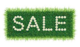 Palabra de la VENTA de margaritas en fondo de la hierba libre illustration