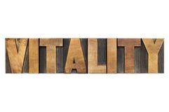 Palabra de la vitalidad en el tipo de madera imagenes de archivo
