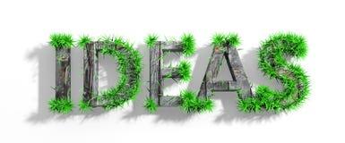 Palabra de madera de las ideas con la hierba verde Fotos de archivo