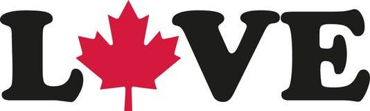 Palabra del amor con la hoja de arce canadiense libre illustration