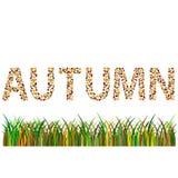 palabra del otoño Imágenes de archivo libres de regalías