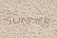 Palabra del verano de conos de la conífera en superficie de la arena Imagen de archivo