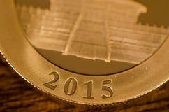 2015 (palabra) en el chino Panda Gold Coin Fotografía de archivo libre de regalías