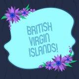 Palabra que escribe el texto British Virgin Islands Concepto del negocio para el territorio de ultramar británico en el color des imágenes de archivo libres de regalías