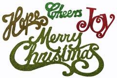 Palabras de la Navidad en brillo y colores Fotos de archivo