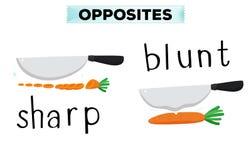 Palabras opuestas para agudo y embotado stock de ilustración