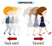 Palabras opuestas para posterior y delantero ilustración del vector