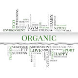 Palabras relacionadas del concepto orgánico en nube de la etiqueta stock de ilustración