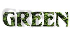Palabras verdes de la hiedra Fotos de archivo