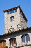 Palace of Alessandri. Viterbo. Lazio. Italy. Royalty Free Stock Images