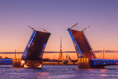 Palace drawbridge, White nights in Saint Petersburg, Russia. Opening of Palace drawbridge, White nights in Saint Petersburg, view of Peter and Paul Cathedral Stock Photo