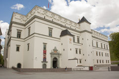 Palace of the Grand Dukes in Vilnius, Lithuania. Palace of the Grand Dukes in Vilnius, cathedral Lithuania Stock Photography