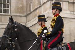 Palace guards Stock Photography