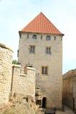 Palace of Kokorin castle Royalty Free Stock Photo