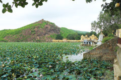 Palace on a lake bundi india. Lake covered in lotus flowers and mountain scene Royalty Free Stock Photo