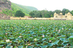 Palace on a lake bundi india. Lake covered in lotus flowers and mountain scene with floating palace Royalty Free Stock Photos