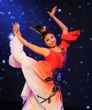 Palace maid-National Dance Royalty Free Stock Photos