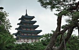 Seoul Palace Museum top Royalty Free Stock Photos