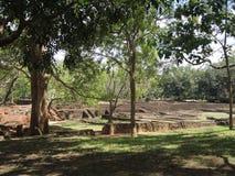 Palace park in Sigiriya Stock Photo