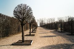 Palace park in Spring with naked tree alley stock photography