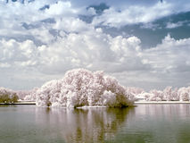 Palace pond. Infrared photo Royalty Free Stock Image