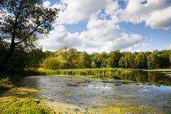 Palace pond Machern Royalty Free Stock Image