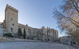 Palace of the Popes and Cathedral of Avignon - Camargue - Provence - France. View of Palace of the Popes and Cathedral of Avignon - Camargue - Provence - France Stock Images