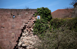 Palace Ruins at Heidelberg Stock Photography
