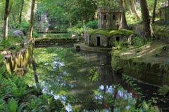Palacio da Pena gardens. Beautiful Palacio da Pena gardens in historical village of Sintra , Portugal Stock Image