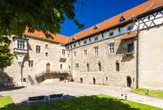 Palacio de Budyne nad Ohri Fotografía de archivo libre de regalías