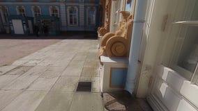 Palacio de Catherine pushkin Parque de Catherine Tsarskoye Selo almacen de metraje de vídeo