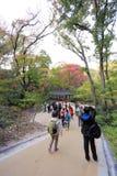 Palacio de Changdeokgung Imágenes de archivo libres de regalías