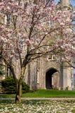 Palacio de Justicia de Londres el condado de Middlesex Fotografía de archivo