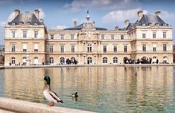 Palacio de Luxemburgo en París, Francia Imagen de archivo libre de regalías