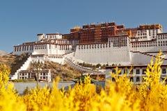 Palacio de Potala en Lhasa, Tíbet Imagen de archivo libre de regalías