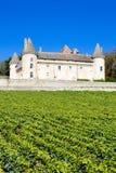 Palacio de Rully en Borgoña Fotografía de archivo