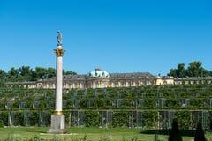 Palacio de Sanssouci y viñedo colgante fotografía de archivo libre de regalías
